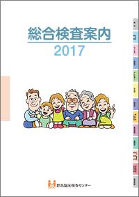 総合検査案内2017